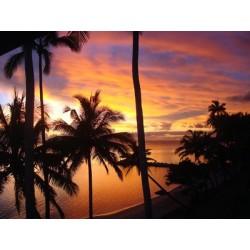 Fidji Sunset  (fragrance sans allergènes) 10 ml