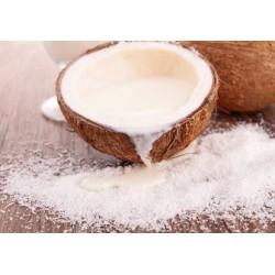 Poudre de Lait de Noix de coco 100 gr