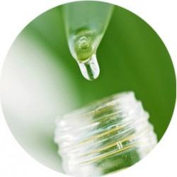 Acide Lactique [Effet AHA, Hydratant, Réduit le pH] 100 ml