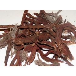 Racine d'Orcanette 100 gr