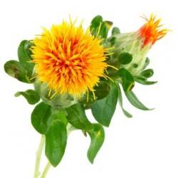 Huile végétale de CARTHAME BIO et raffinée
