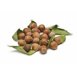 Huile végétale vierge de NOISETTE 50 ml