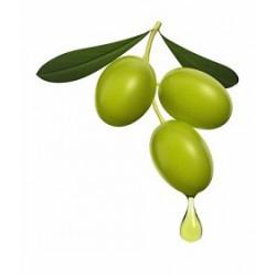 Squalane végétale [issue de l'huile d'Olive] 100 ml
