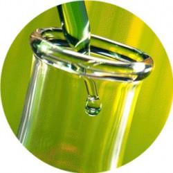 Geogard® 221 / Cosgard / conservateur liquide pour cosmétique 30 ml