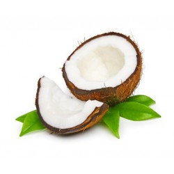 COCONUT  Fragrance standard 50 ml