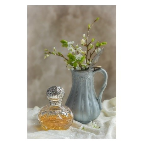 IVORY MUSK Fragrance standard 10 ml