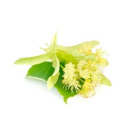 FLEUR de TILLEUL Fragrance standard 10 ml