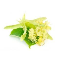 FLEUR de TILLEUL Fragrance standard 50 ml