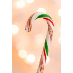 CANDYCANE Fragrance standard 10 ml