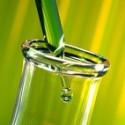 Protéines de SOIE Hydrolysées [conditionneur capillaire/humectant] 50 ml