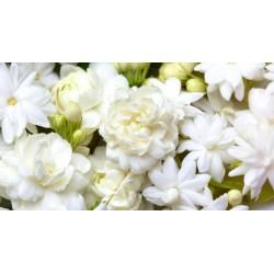 Jasmine & Rosewood  Fragrance standard 50 ml