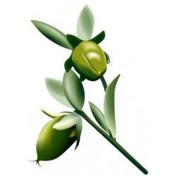 Huile végétale vierge de JOJOBA BIO 100 ml