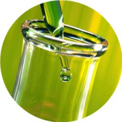 Geogard® 221 / Cosgard / conservateur liquide pour cosmétique 100 ml